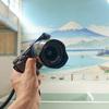 SONY α6000にZEISS Loxia 2.8/21をつけて、江戸東京たてもの園(東ゾーン)を撮ってみた。