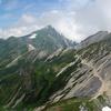 白馬岳の花々 (1)     2012.8.13-16