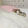 布団で寝るウナさん。