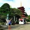 【多摩ランニングコース】新宿から約30分!!歴史と自然の高幡不動ワンウェイトレイル
