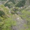 霊仙山「島津越えの道」