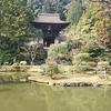 【奈良のお寺】円成寺に行ってきました!【GWにいかが?】