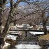 冬の猪苗代(川桁)観音寺川に行ってみた✨(人気お花見スポット)