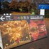 昭和記念公園 黄葉紅葉まつり2020