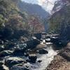 摂津峡渓谷の紅葉と白滝に感謝と祈り
