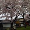 仙台で「漢方不妊/漢方不妊治療の応用」を勉強してきました。