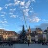 クリスマスツリーがクレベール広場に^ ^