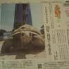 長寿動物顕彰、サーバル、チータ赤ちゃん