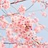 ウキウキ春の新生活