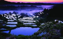 【新潟県】絶景の棚田からマンガまで、幅広い魅力を持った新潟を英語でご紹介