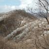 塔ノ岳で綺麗な霧氷