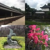 【都内お出かけスポット】皇居で四季と歴史を楽しむ!!