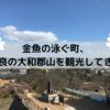 金魚が泳ぐ城下町、奈良の大和郡山を観光