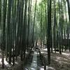 2018年9月8日 鎌倉報国寺と巡礼古道