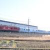 第1481列車 「 甲226 JR東日本 GV-E400系の甲種輸送を狙う 」