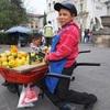 グアテマラの働くひと図鑑「フルーツ売りの少年」@シェラ