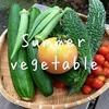 順調に育つ夏野菜を収穫して美味しく頂く