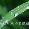 梅雨時期のつゆわすれ案件【お題:そうめんの季節、来てます】