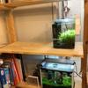 45cm規格水槽を置く準備として、棚を増設しました。