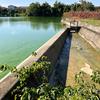 大溜池(和歌山県紀の川)