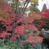 京都の金閣寺周辺 紅葉と穴場観光情報!