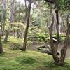 西芳寺(苔寺)  奇跡の庭  苔の生育に必要なすべての条件がそろった場所