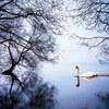 【出演】Memories & Discoveries 第19回 「チャイコフスキーのラブソング」