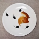 Queue du Têtard オタマジャクシのしっぽ