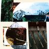 Ametsub、アレイ・ムビラをフィーチャーした『Mbira Lights 1 EP』発表