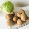 値段比較してみた!ザクセンマルクトの野菜とスーパーの野菜