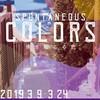 2019年3月9日 感じる芸術祭 真鶴まちなーれ開幕!