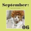 【猫カレンダー応募】ワン!にゃん!カレンダー2019