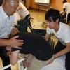 ◆基礎介護が大事 安全な介護・実技講座 応用篇開催