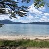 田沢湖で流木拾い