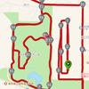 2016立川ハーフ―レース展開のつづき。10kまで