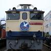 貨物列車撮影 11/12 国鉄色になったEF65 2065を撮る