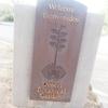 【アメリカ一人旅・4】サボテンだらけの砂漠植物園