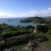 オークランド 弾丸一人旅行記 その5 ニュージーランド編 ワイヘケ島へ 自転車レンタルでサイクリング