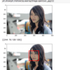 Object Detection(OpenCV、Mask R-CNNなど)