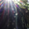 スゴイ映像  高千穂峡の滝