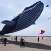 世界の凧の祭典
