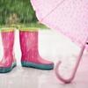 幸せを呼ぶ『四つ葉のクローバー』 と 梅雨を運ぶでんでんむし『かたつむり』