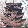 京都 ぶらり立ち寄り