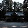 伊和神社の森で