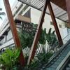 【夏ハワイ⑤】小さくておしゃれなホテル「ザ  レイロウ   オートグラフコレクション」