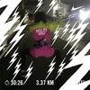 ランニングログ 心拍トレーニング13週目 7-5日目 元・心房細動ランナーとお方さま、ポンコツ夫婦のフルマラソンチャレンジ日記