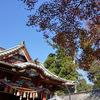 """高尾山は想像以上に""""観光地""""でした"""