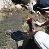 浄水器で安心水by部長