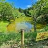 はたご池(静岡県富士)