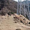 煤ヶ谷~大山北尾根~大山下社~大山ケーブル